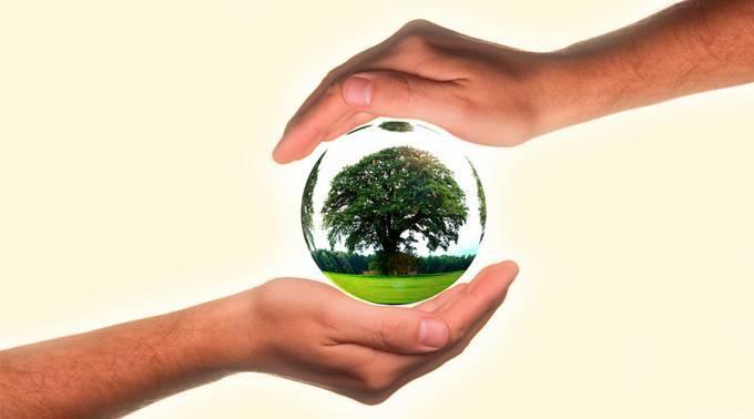 Las Energías Renovables Marcan El Paso Del Post Acuerdo De París Sobre El Clima