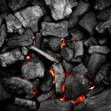 Cambio Climático, Carbón Y Partidos Políticos