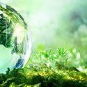 """Borrador De """"Planificación Energética Indicativa"""" O Como Dejar Morir Las Renovables"""