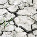 """La Fundación Renovables Se Suma A La Campaña """"Ley De Cambio Climático Ya¡¡"""""""