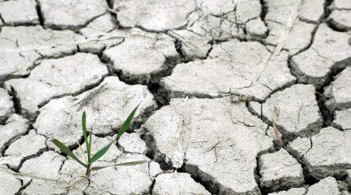 La Fundación Renovables Se Suma A La Campaña «Ley De Cambio Climático Ya¡¡»