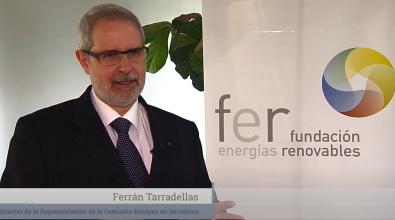 Resumen De La Directiva Europea De Energías Renovables, La Opinión De Los Expertos