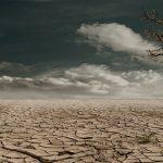 Alianza Por El Clima Recuerda La Importancia De Un Debate Transparente, Inclusivo Y Equilibrado Sobre La Ley De Cambio Climático