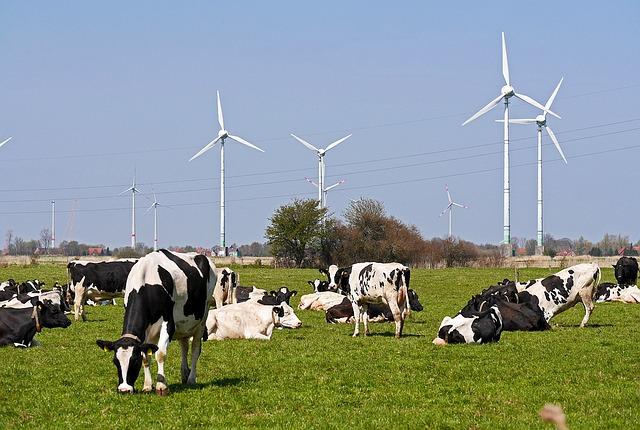 Fuentes de energía: Combustibles fósiles, nuclear y renovables