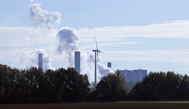 Descarbonizar la economía