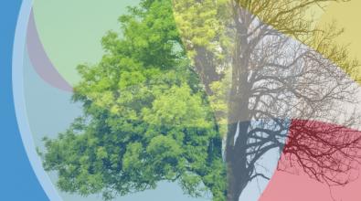 Análisis De La Ley De Cambio Climático Y Transición Energética