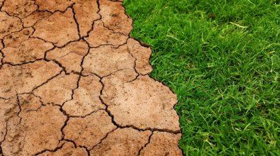 La Fundación Renovables Considera El Plan De Recuperación Presentado Por El Gobierno Como Un Buen Soporte Para Una Recuperación Económica Basada En La Transición Energética