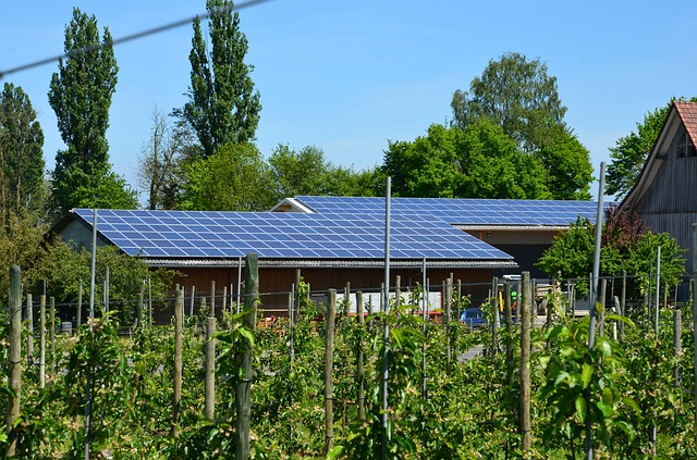 La Fundación Renovables aboga por una Ley de Cambio Climático y Transición Energética con objetivos más ambiciosos, que sea homogénea en su desarrollo y con un cambio legislativo profundo