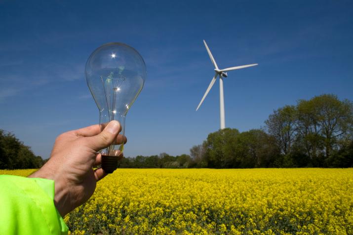 Análisis, viabilidad y definición de las características de un repositorio abierto y colaborativo de recursos para la enseñanza y aprendizaje de materias que interrelacionen el uso de energías renovables y la biodiversidad desde un enfoque multidisciplinar